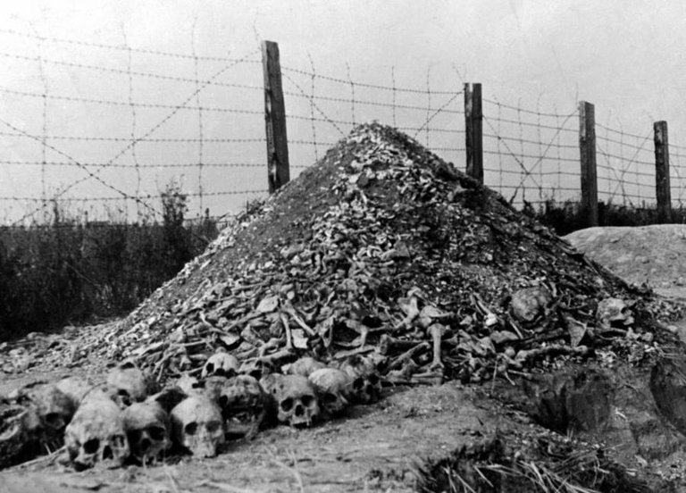 Human bones litter the grounds of the Majdanek concentration camp in Lublin, Poland following its liberation by Soviet forces on July 24, 1944..jpg