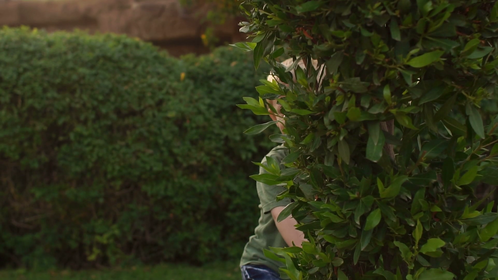 videoblocks-little-boy-hiding-behind-a-tree-playing-hide-and-seek-slow-motion_h1lzbouycx_thumbnail-full01.png